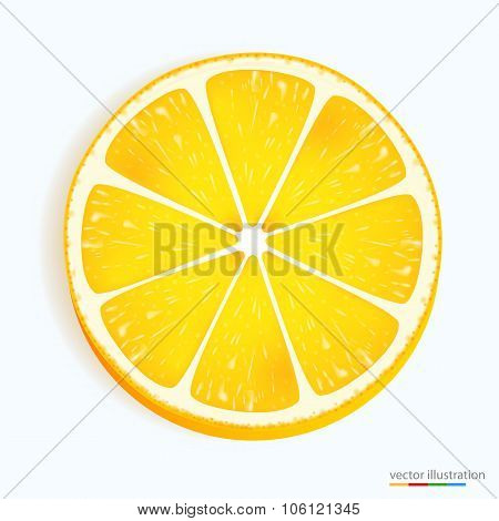 Fresh lemon slice icon on a white