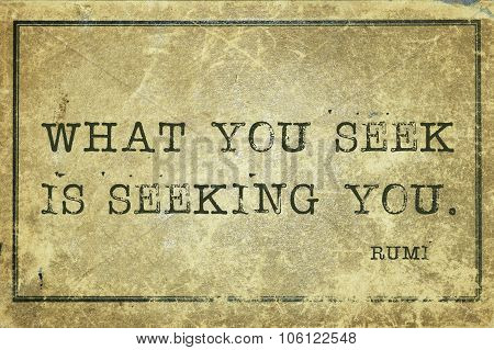Seek You Rumi