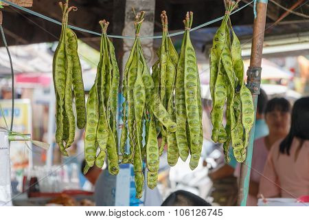 Bunch Of Parkia Speciosa Or Green Beans For Sell In Tha Thailand Market