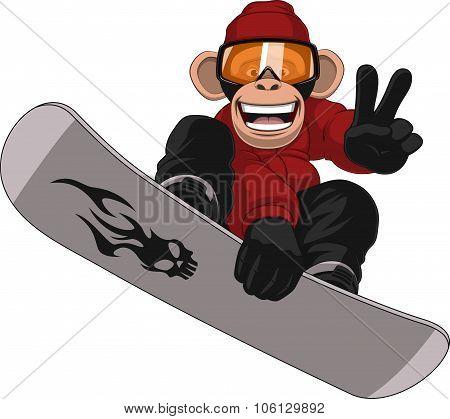 Funny Monkey Snowboarder