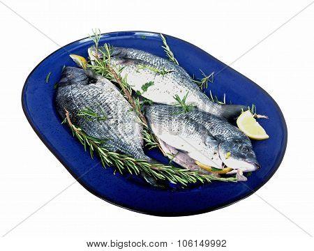 Tree Fresh Fish On A Platter