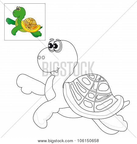 Picture For Coloring A Turtle .