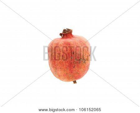 Rotten pomegranate fruit.