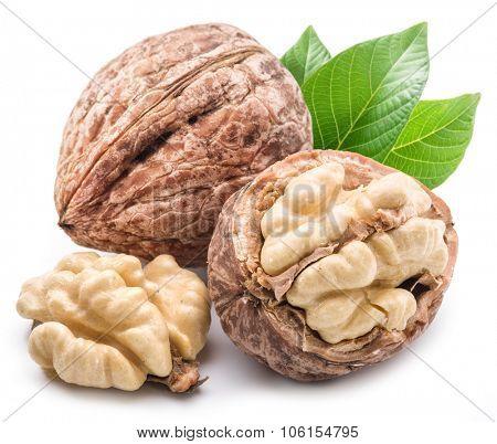 Walnut and walnut kernel isolated on the white background.
