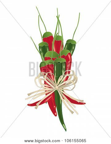 Chillies Bundle