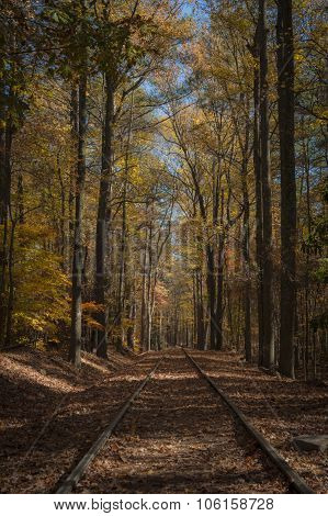 Train Tracks To Autumn