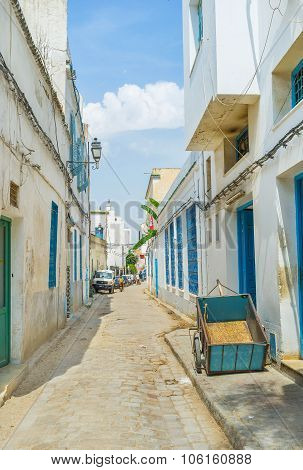 The Street Of Tunis