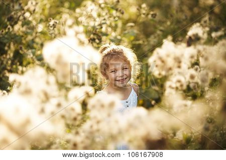 Happy Cheerful Little Girl Among Wildflowers