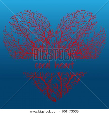 Red coral heart on a dark blue background