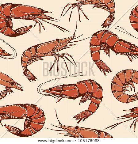 Shrimp Hand Drawn Pattern