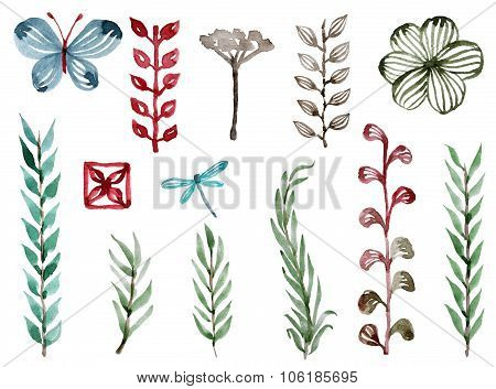 Set Of Watercolor Natural Plants And Creatures