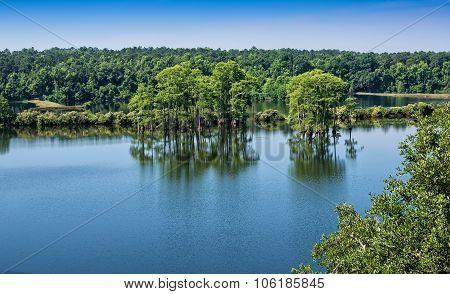 Piney Z Lake