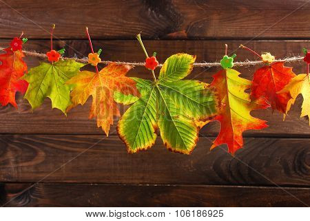 Autumn Leaves Hanging On A Rope Against  Wooden Background