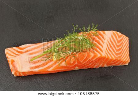 Sea Trout On Slate