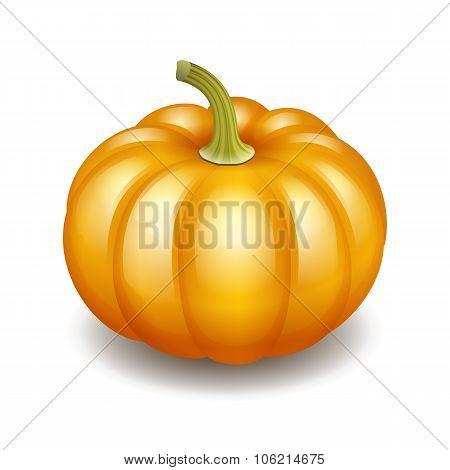Orange autumn pumpkin icon