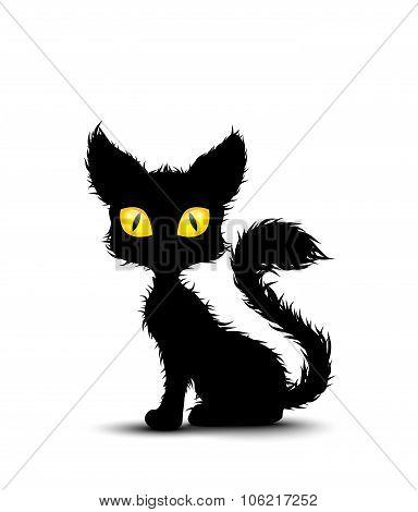 Black cat sitting isolated background