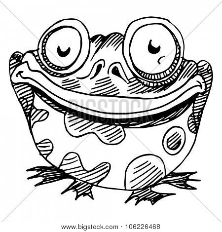 An image of a fat frog.