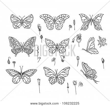 Set with different butterflies. Black and white.  For your design, announcements, postcards, posters.