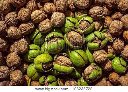 Nuts.walnuts Background. Lots Of Walnuts