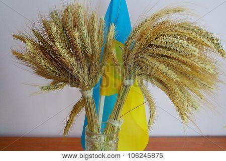 Ukrainian flag and rye ears.