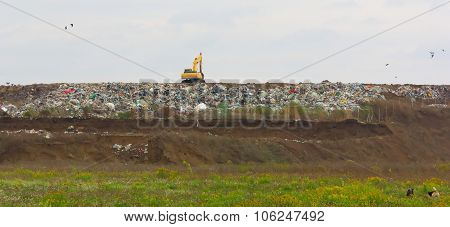 Excavator at the garbage dump