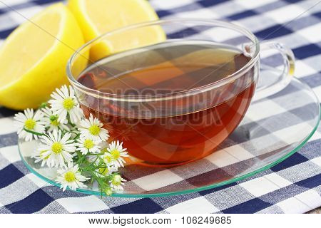 Chamomile tea with lemon and fresh chamomile flowers on checkered cloth