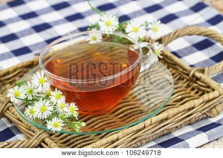 Chamomile tea in transparent cup with fresh chamomile flowers on wicker tray
