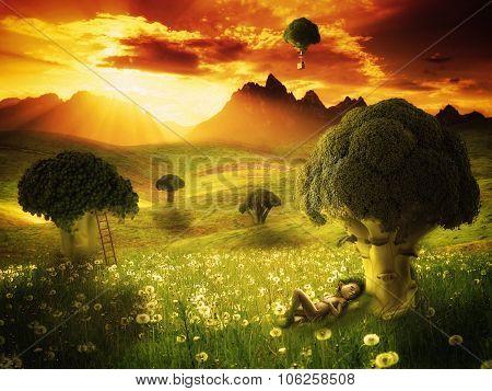 Fantasy - Broccoli Land