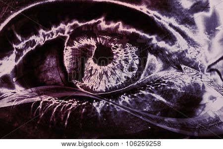 Human Eye Abstract Dark Background