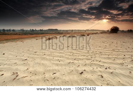 Sunrise Beams Over Sand Dune