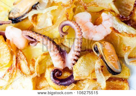 Tasty food. Fried potatoes with octopus, shrimp, mussels and onion over potato