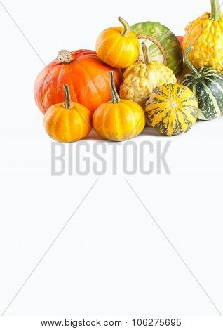 Thanksgivings food pumpkins on white background.