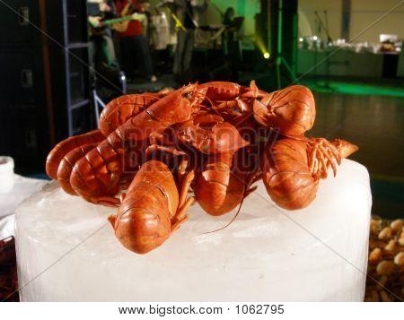 Big Lobsters