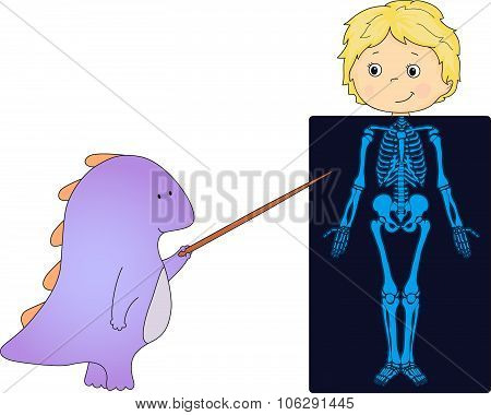 Doctor Dragon And Patient Whose Body Is Shown In The X-ray. Vector Illustration For Kids About Anato