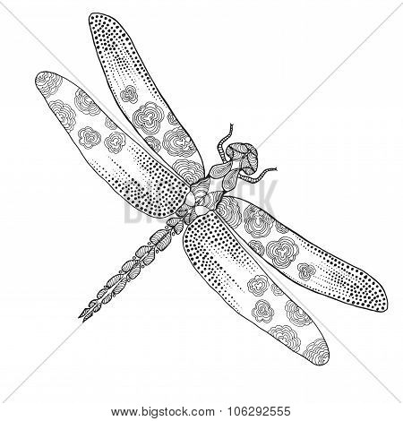 Dragonfly. Animals. Hand drawn doodle insect.