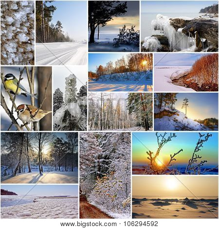 Collage on the theme of winter