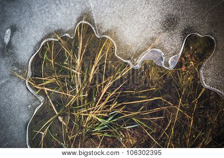 Melting Ice On A Pond In Spring, Close-up