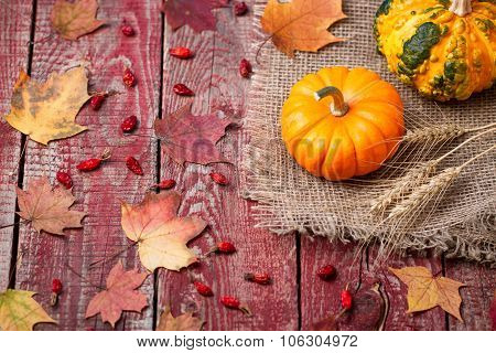 Pumpkins, Autumn Leaves And A Dogrose On A Wooden Table