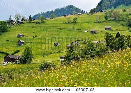 Green Mountain Side Near Alt St Johan, Switzerland