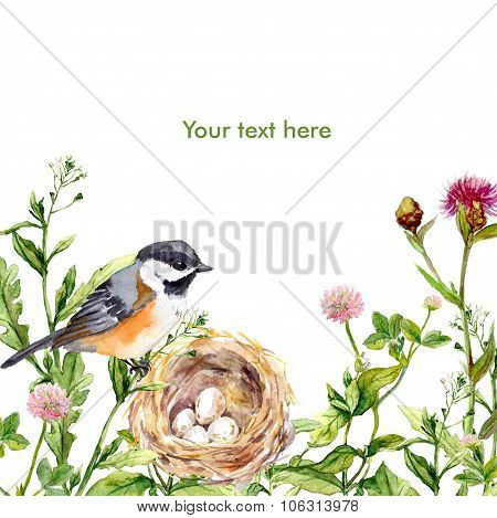 Greeting card with retro design: wild herbs, bird and nest. Watercolor vintage card