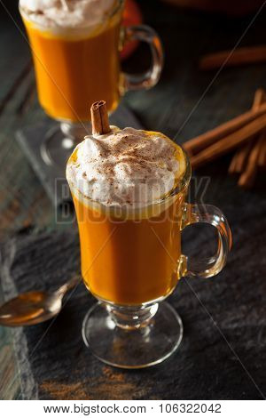 Homemade Thanksgiving Boozy Pumpkin Cocktail