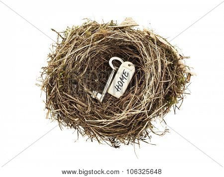 Door key with HOME tag in bird nest isolated on white background