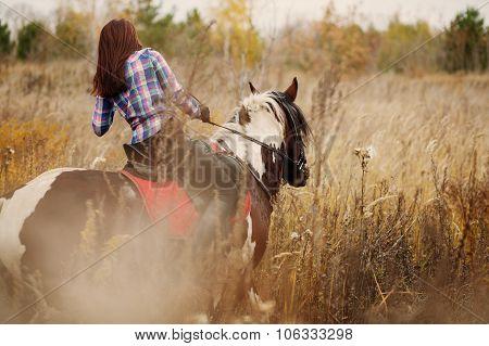 Brunette Woman on horseback