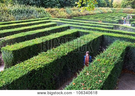 Green Maze Of Schloss Schonbrunn Palace Garden