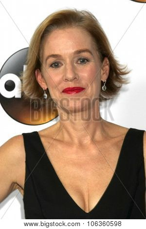 LOS ANGELES - JAN 14:  Penelope Ann Miller at the ABC TCA Winter 2015 at a The Langham Huntington Hotel on January 14, 2015 in Pasadena, CA