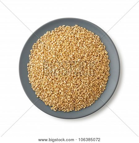 Plate Of Wheat