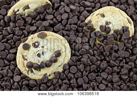 chocolate chip cookie with happy face