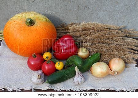 Set of different vegetables. Top view.