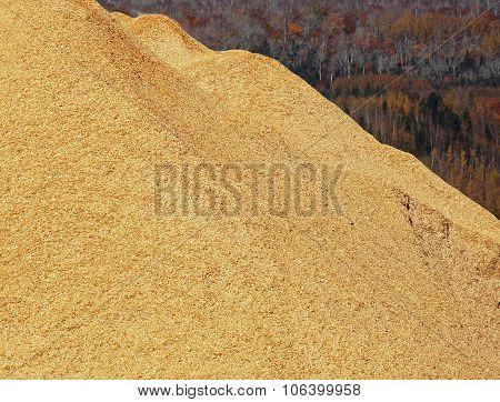Woodchips Sawdust Pile Autumn Colors