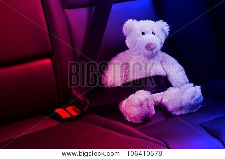 Teddy bear fastened in the back seat